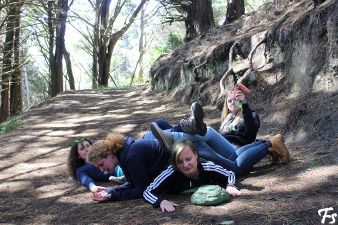 Frodo, Merry, Pippin & Sam